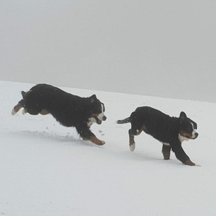 Zara mit Mama Pipa-Luz im Schnee