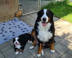 Mama Ullya mit Frodon-Baloo