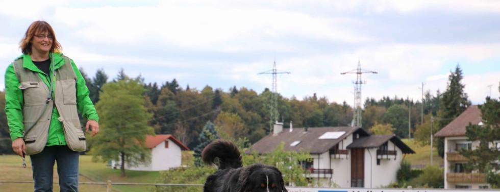 2016-10-04_14.44.55_Bäriwoche_Di_138_um.