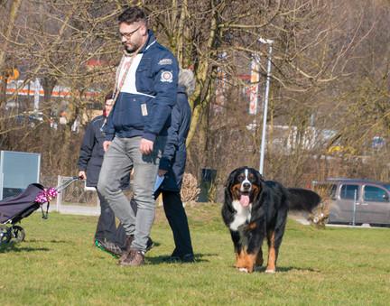 2018-03-24_09.00_Körung_KBS_Aarburg_145.