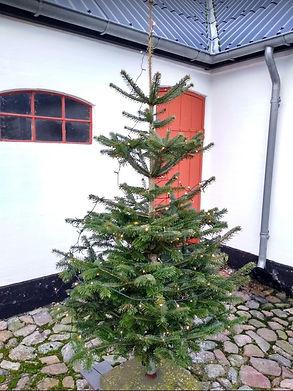 Juletræ_600x800.jpg