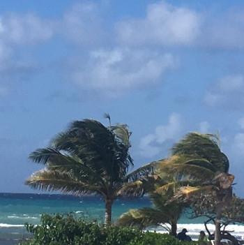 Foredrag om Jamaica-nu i Rørvig