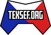 texseflogo4-gregg-kite.png