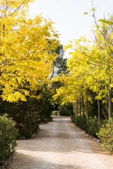 Villa Cala 61.jpg