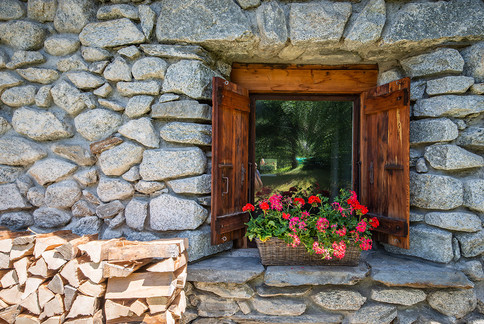 Ferme-du-Bois-Alpine-flowers.jpg