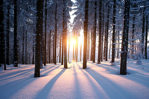 mindful_skiing_chamonix_retreat