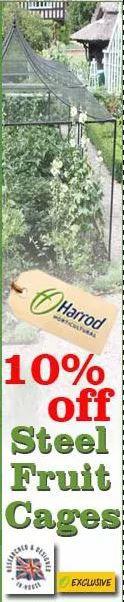 Harrod2.JPG