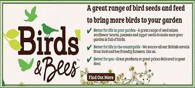 BirdsBees4.JPG