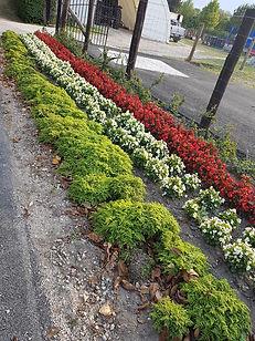 Blomsterbed i ungarnske farver.jpg