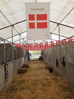 Billede af den danske stald.jpg