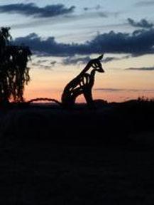 Foto af ræven - aftenstemning taget af Malene Larsen.jpg