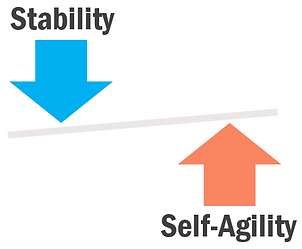 Stability_Self-Agility_balancing_act.png