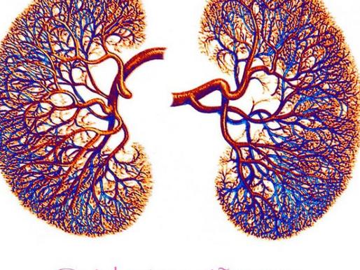 Beneficios de la Terapia Nano Electrónica en la insuficiencia renal