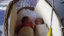 Lullababy® die einzigartige seit über 25 Jahren erprobte sichere Therapeutically Baby Movement® Fede