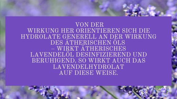 Von der Wirkung her orientieren sich die Hydrolate generell an der Wirkung des ätherischen Öls - wirkt ätherisches Lavendelöl desinfizierend und beruhigend, so wirkt auch das Lavendeshydrolat auf diese Weise.