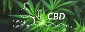 cbd cannabidiol von feeling im aroma.blog - Hydrolate und Ätherische Öle, Aromatherapie und Aromaküche