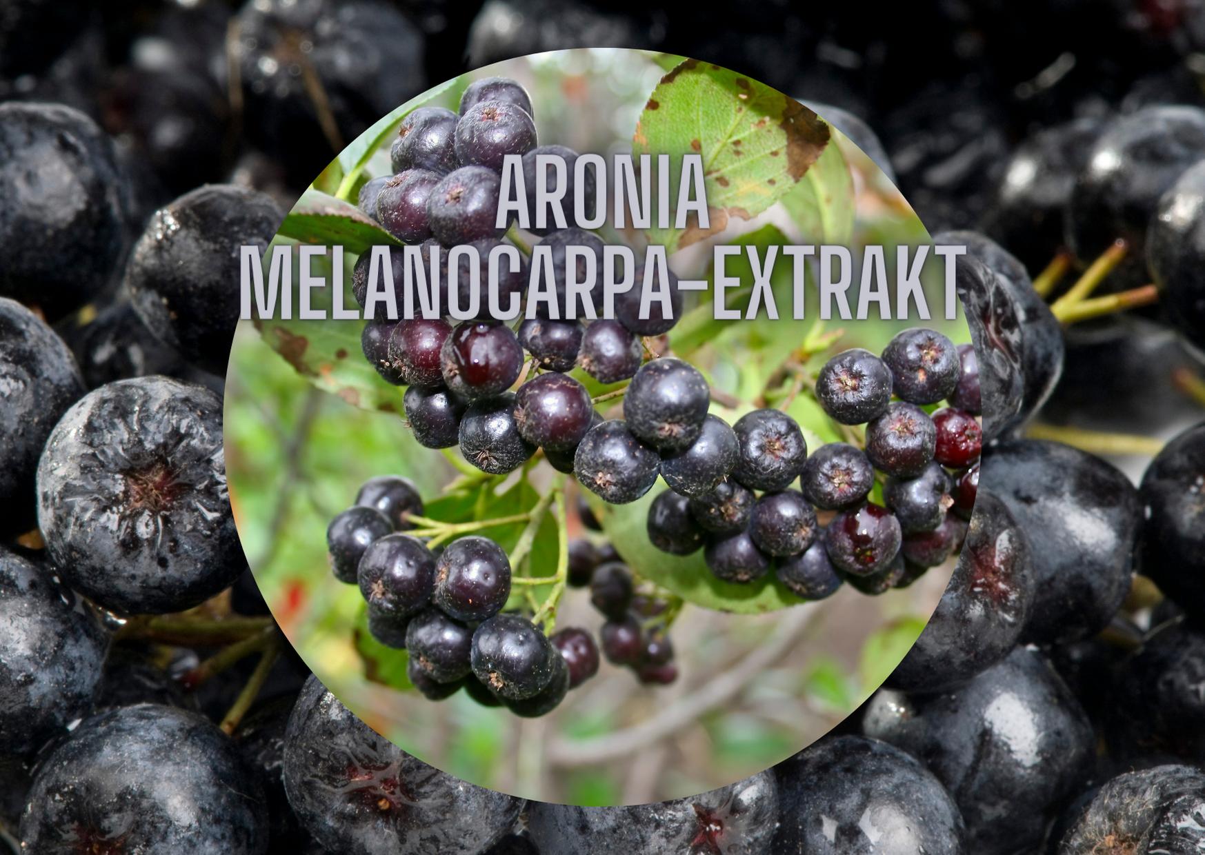 ARONIA-EXTRAKT