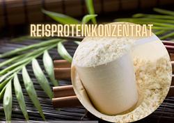 Reisproteinkonzentrat