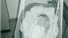 Lullababy® Federwiege fördert Frühgeborene