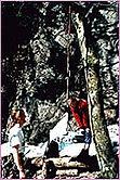 David (3Monate) liegt glücklich in den Bergen in seiner Lullababy Federwiege,