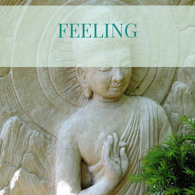 feeling Video