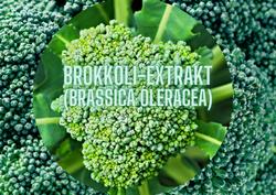 BROCCOLI-EXTRAKT