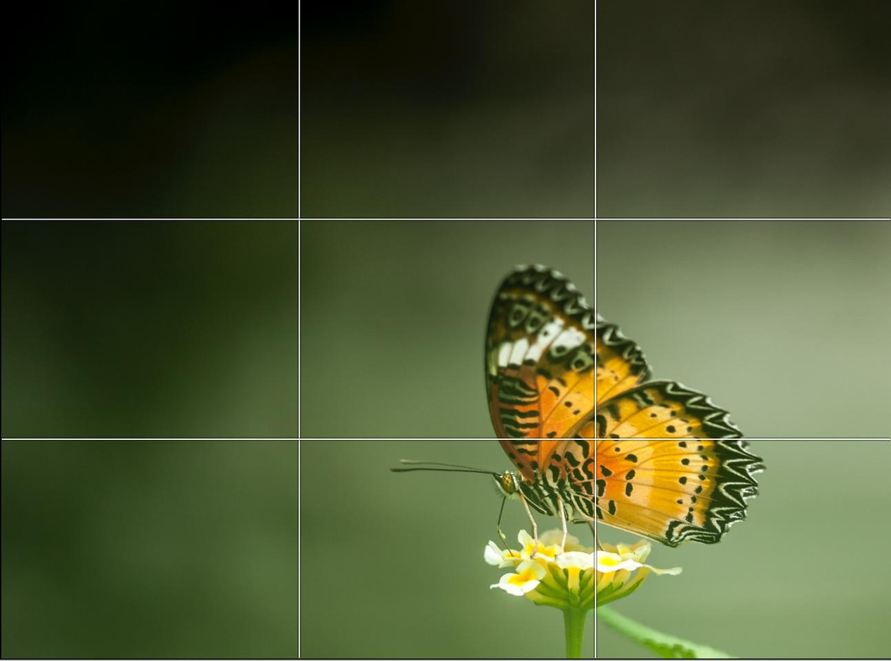 Bildschirmfoto 2020-12-09 um 11.36.42.pn