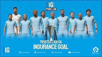 meister insurance goal.jpg