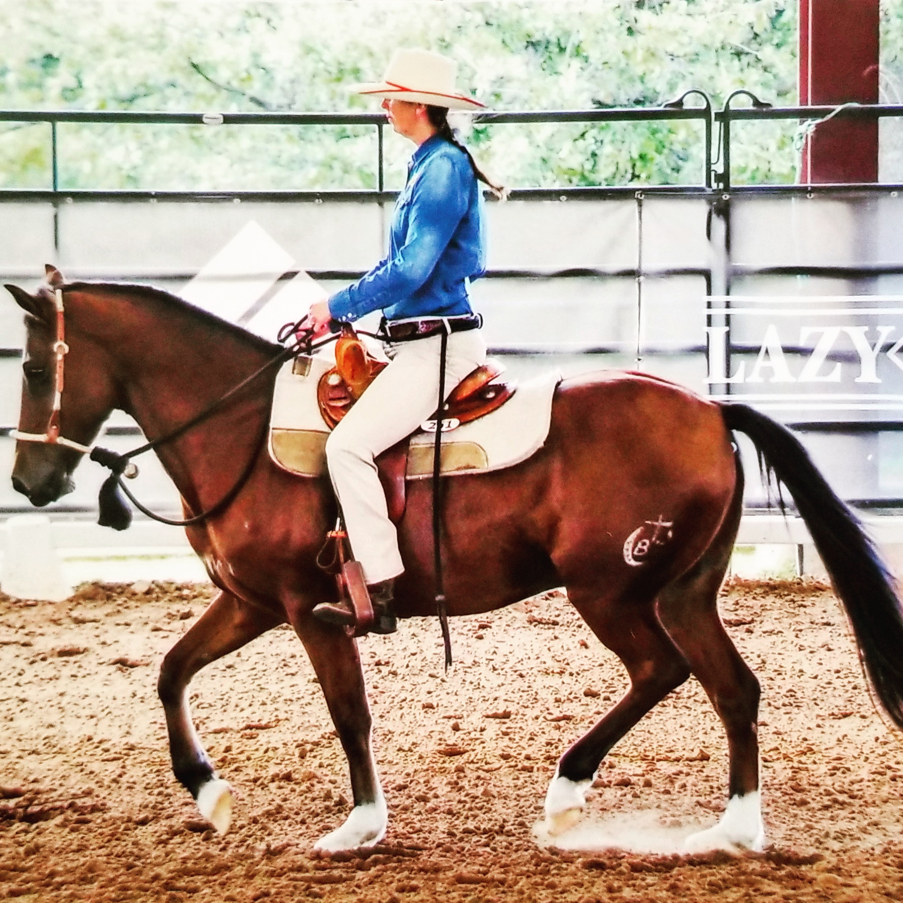 Art of Horsemanship LLC