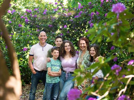 Onder de Rhododendrons