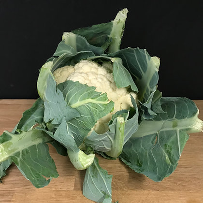 TACONS CAULIFLOWER (EACH)-NORFOLK