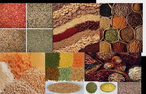 Rice | Grains | Pulses