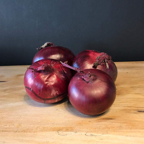 RED ONIONS (KG) - NETHERLANDS