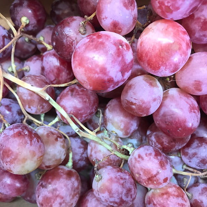RED GLOBE GRAPES (KG)- ITALY