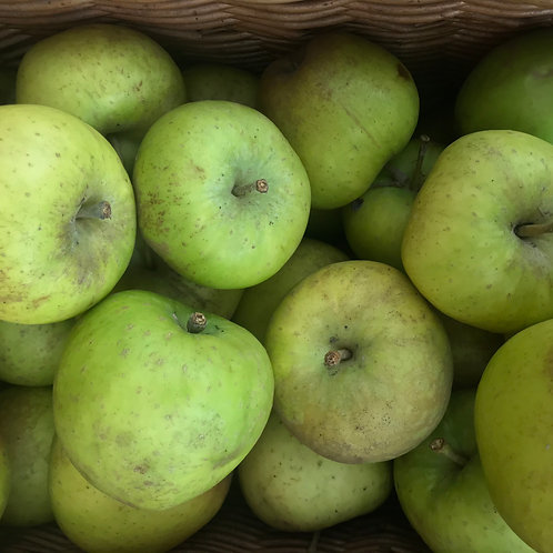 ROSEMARY RUSSETT APPLES (KG) - UK