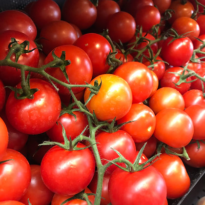 AG MEALE SMALL VINE TOMATOES (KG) - NORFOLK