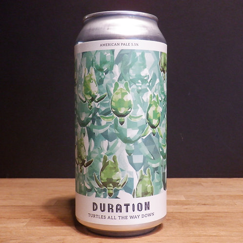 DURATION - TURTLES ALL THE WAY DOWN - 440ML, 5.5% ABV