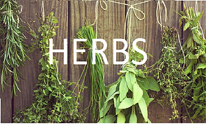 HERBS.png