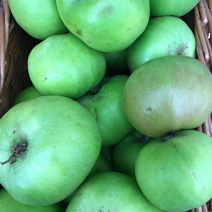 BRAMLEY APPLES (KG)