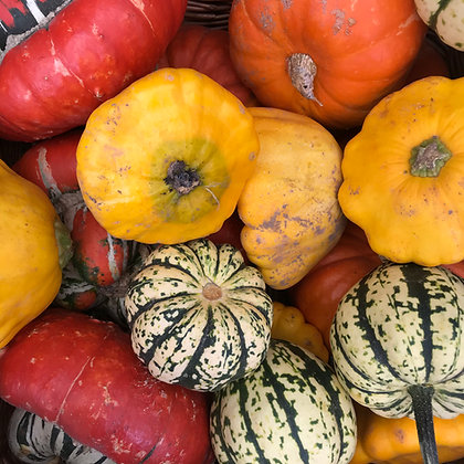 MIXED SQUASH (KG) - UK