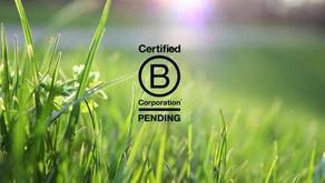 Pending B Corp : pour construire une entreprise durable dès le début !