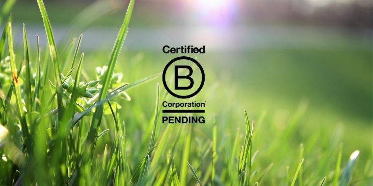 Pending B Corp et startup durable