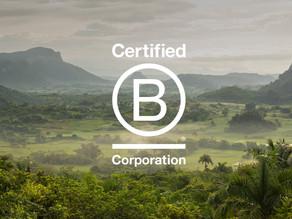 Certification B Corp: les meilleures entreprises pour la planète