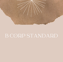 b corp standard moment of impact
