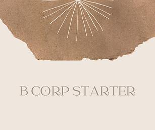 b corp starter moment of impact