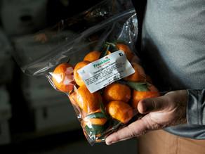 Orange is the New Peach