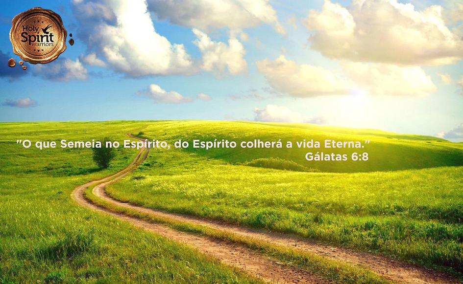Agradecimento_Oferta_Campo_Ensolarado.pn