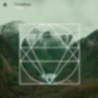 Trinity Roots album cover.jpg