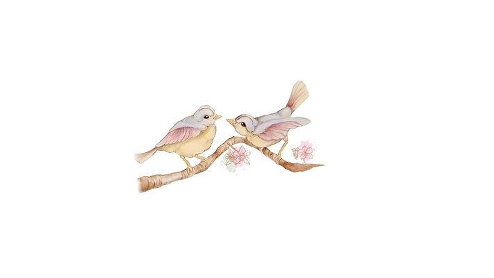 ציפורים קטנות 12.jpg