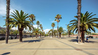 Barcelona 3852.jpg